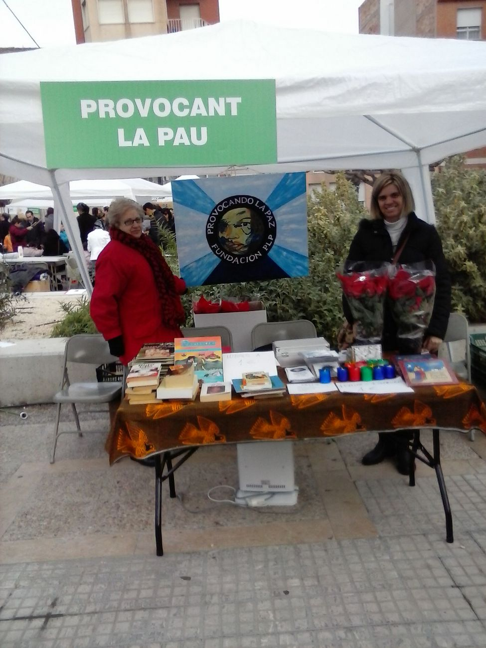 movilizacion-social-acciones-voluntariado-estands-en-ferias-9